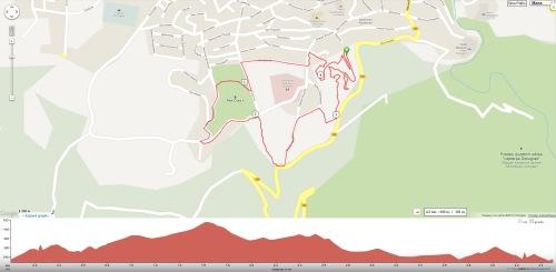 44094993-xco_sokobanja_mapa